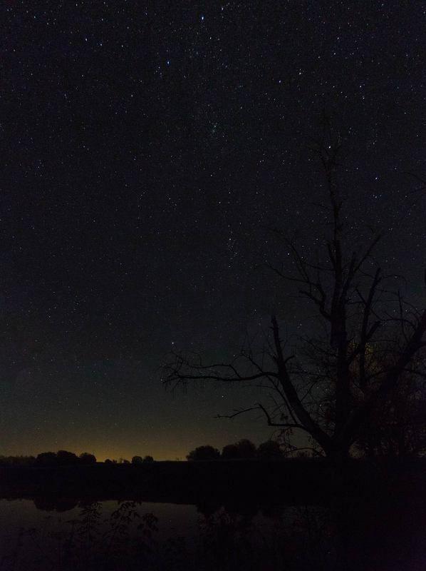Ночной прудикphoto preview