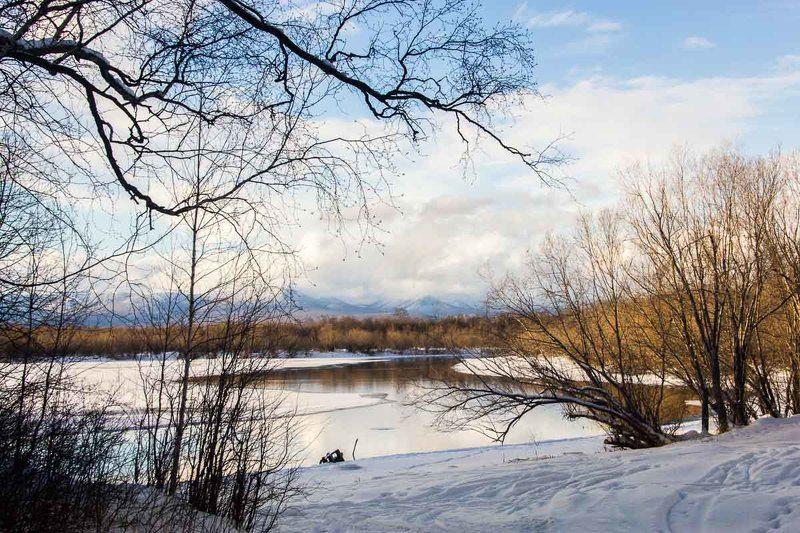 Камчатка, Козыревск, озеро, деревья, зима Камчатка. Козыревск.photo preview