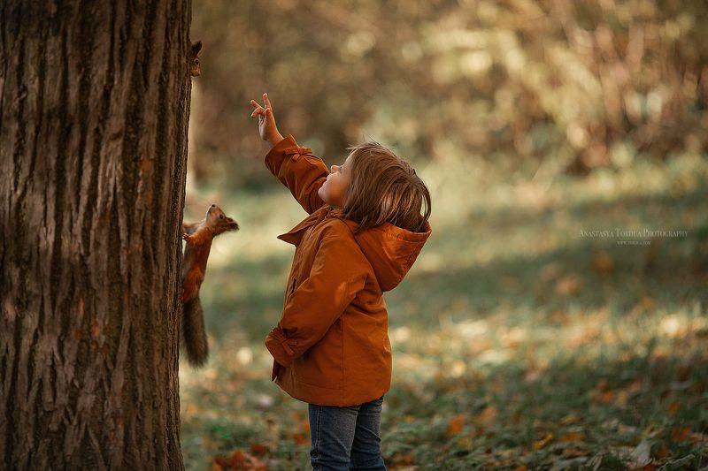 белки дети эмоции лес осень радость Друзьяphoto preview