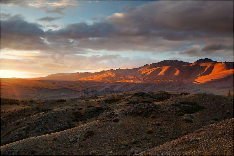 алтай озеро осень золотая горы лиственница закат,солнце Последний всплеск...photo preview