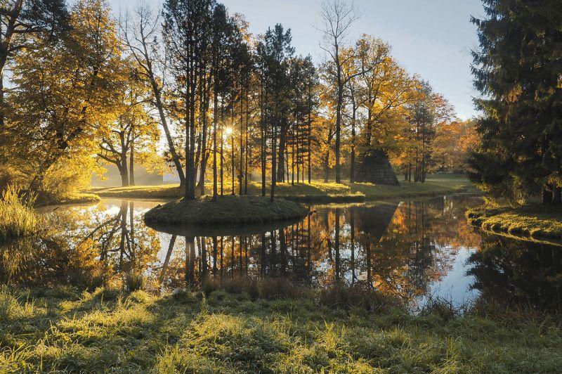 Утро в Пушкинеphoto preview