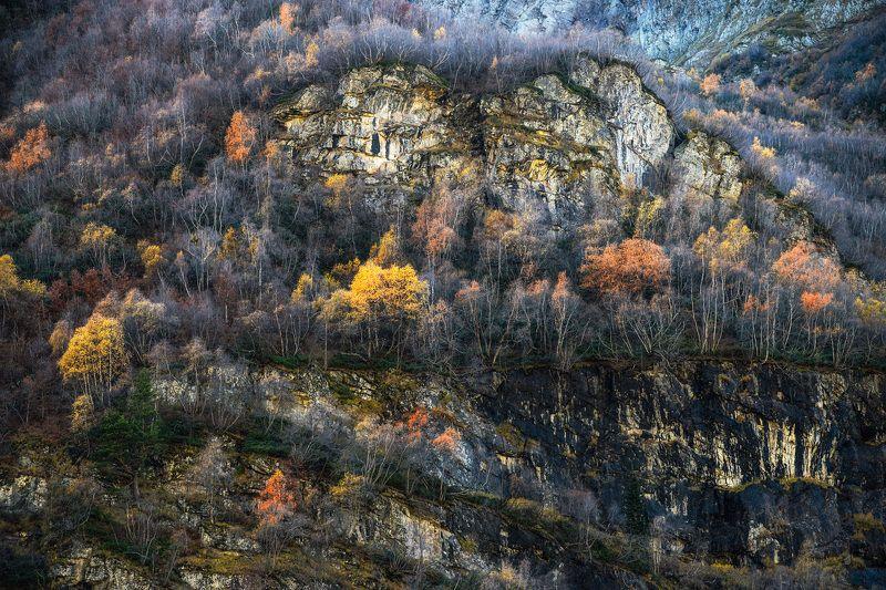 colors autumn forest mountains nature природа пейзаж осень лес горы landscape Colors.photo preview