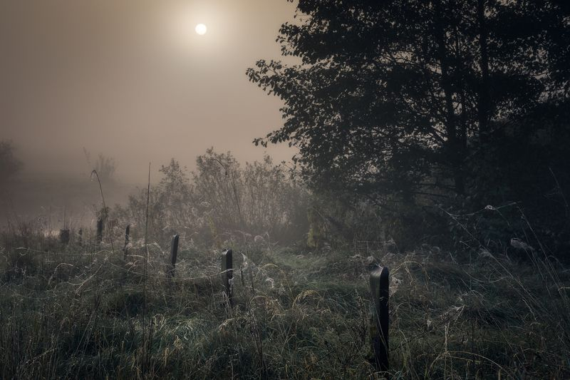 river fog sun mist dawn poland podlasie biebrza dark mood Styx...photo preview