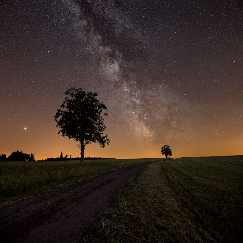 astro, galaxy, milkyway, tree, stars, nightscape Summer night..photo preview