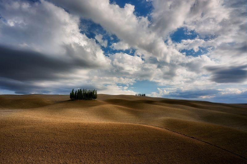 tuscany, italy, landscape Cyprysses at autumnphoto preview