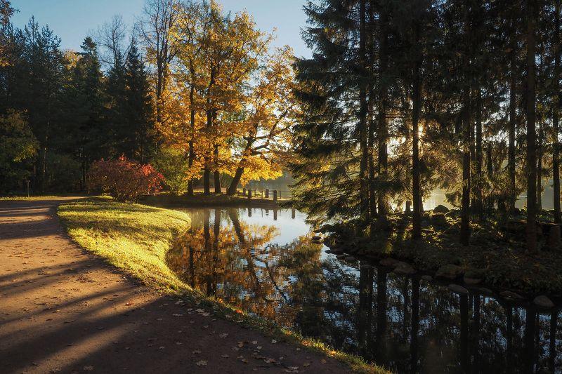 Утро в Екатериненском паркеphoto preview