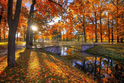 Царское село. осень...
