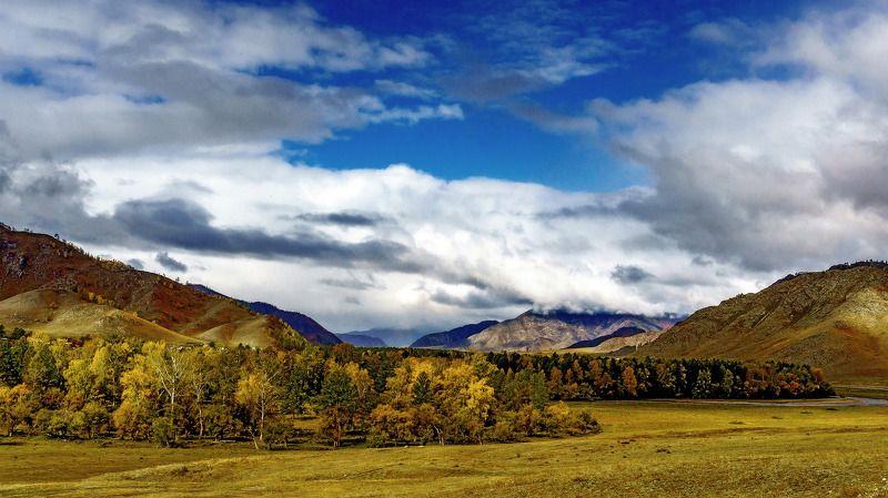 пейзаж, осень, горы, Горный Алтай  Осенний Алтай. photo preview