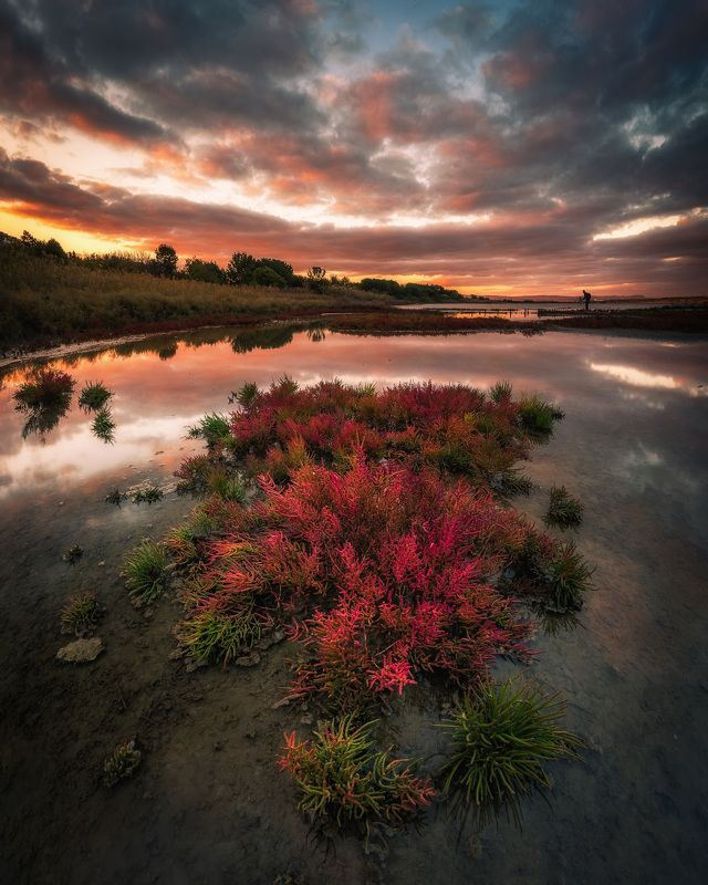 autumn, lake, water, landscape, fire, red, color, beautiful Autumn firephoto preview