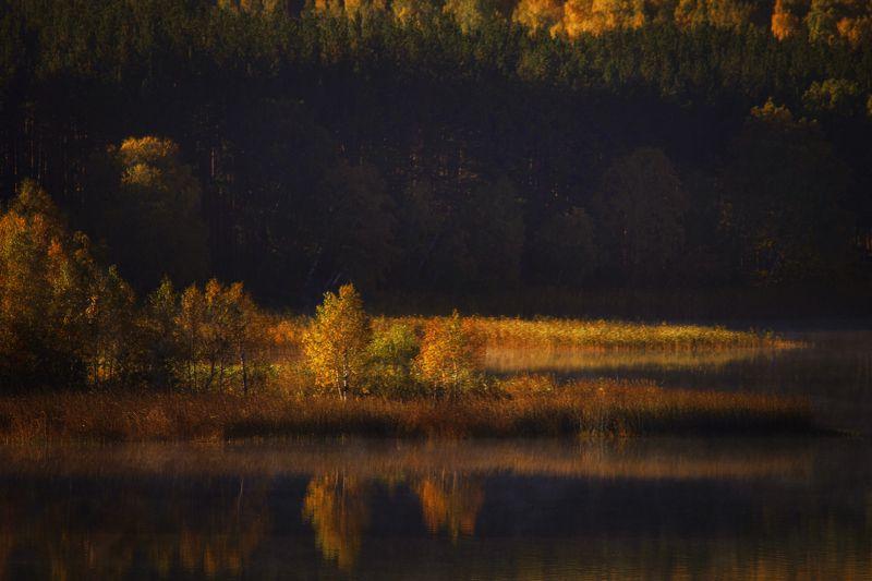 На озере Аушкульphoto preview