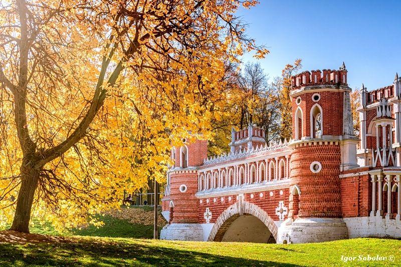 царицыно, осень, москва, tsaritsyno, autumn, moscow Осень в Царицыноphoto preview
