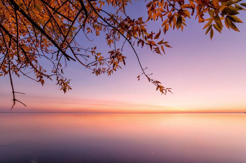 Ванильное небо октябряphoto preview