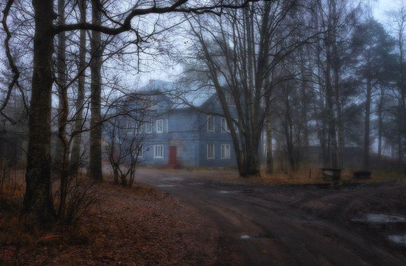 осень,грусть,пейзаж,туман,дом,дорога Тепло осенней грусти греет душу...photo preview