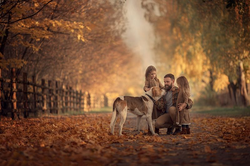 семья, дети, собака, осень, листва Мои самые любимые люди на планете..photo preview