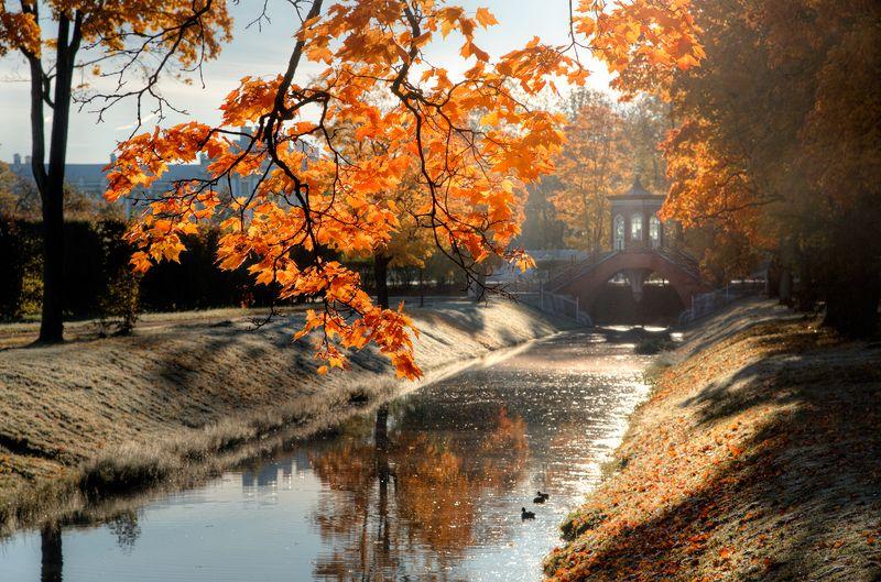 октябрьские прогулки по Александровскому паркуphoto preview