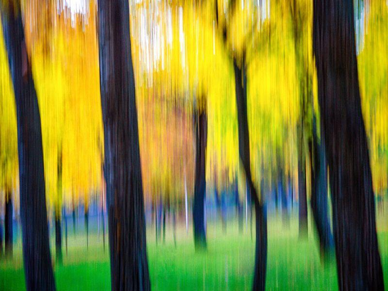 Осень памяти моей...photo preview