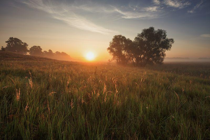 Утро августаphoto preview
