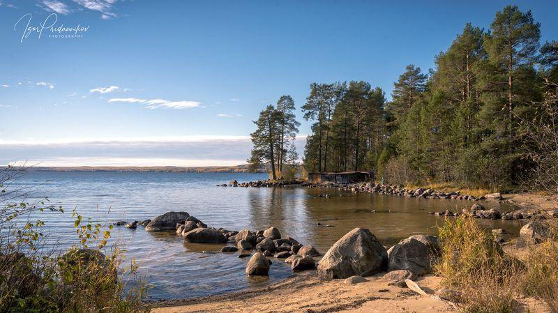 озеро, камни, пляж, сосны, утро На берегуphoto preview