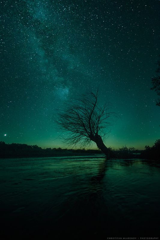 night. astrophotography, astronomy, tree, cosmos, lonely, nightscape, river, milky way, galaxy, milkyway, space, stars, sky, bulgaria, nature, light, long exposure, vertical, astroscape Forgotten World | Забравен Святphoto preview