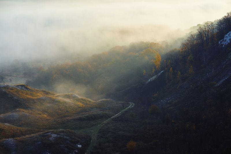 воронеж Утренний туманphoto preview