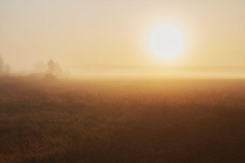 прощай осень!photo preview