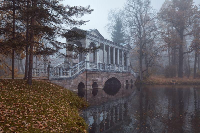 пушкин, царское село, туман, утро, октябрь, осень, листопад, мост Туманное утро у Мраморного мостаphoto preview