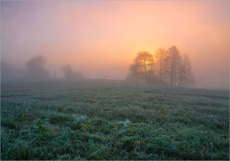 утро, рассвет, осень, туман, беларусь ***photo preview