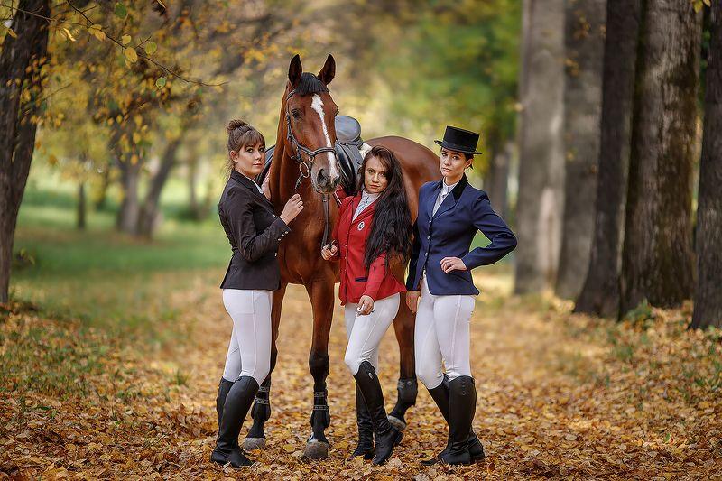 лошадь, портрет, кони, девушка, модель ***photo preview