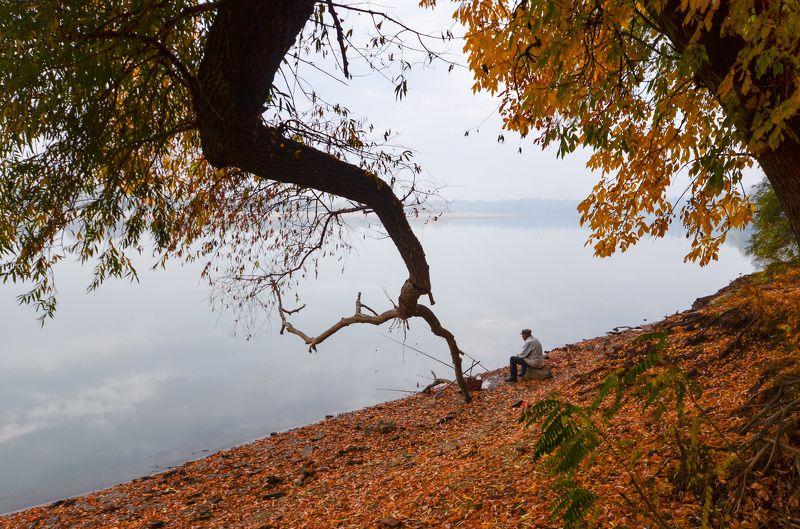 река, утро,туман, осень Про утро.photo preview
