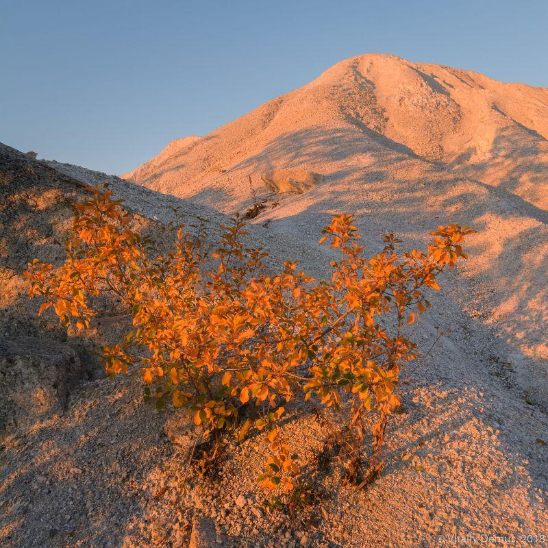 Неземные пейзажи окрестностей Актовского каньона.photo preview