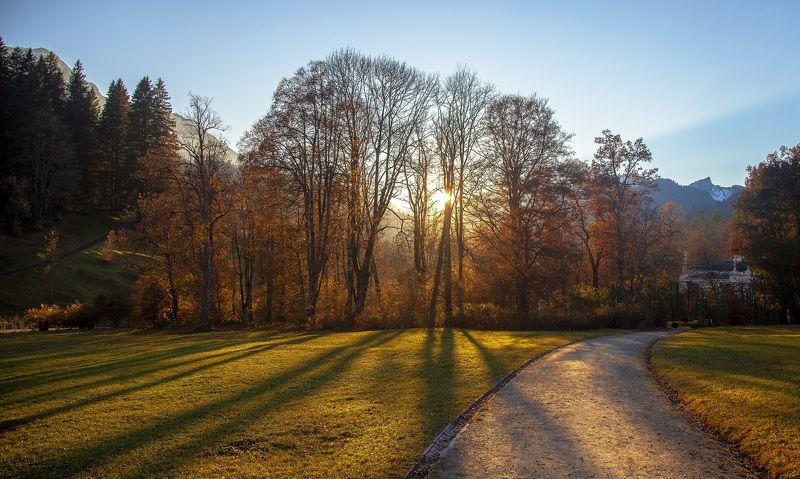 горы, осень, германия, озеро, поляна, закат, солнце, вечер Осенние зарисовкиphoto preview