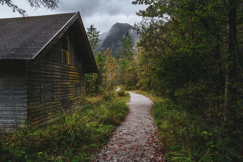 гора; лес; осень; туризм Путеводная нить...photo preview