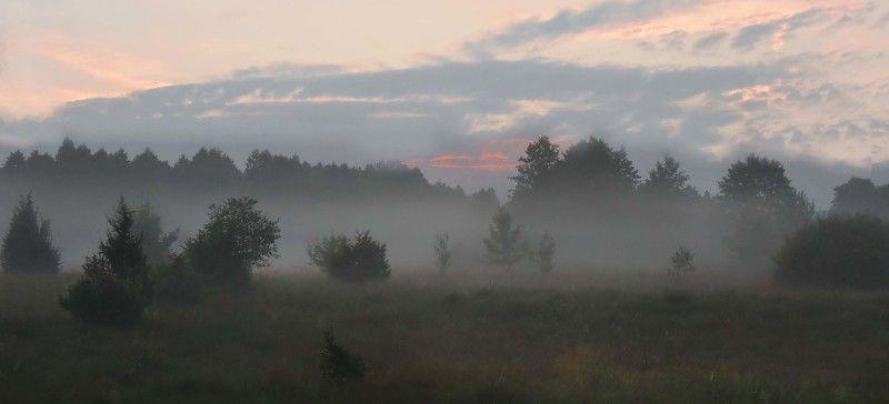 неман, рассвет, туман Утро на Неманеphoto preview