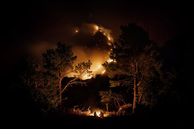 пожар, лес, ночь, костер, сосны, инь, ян Инь-Янphoto preview