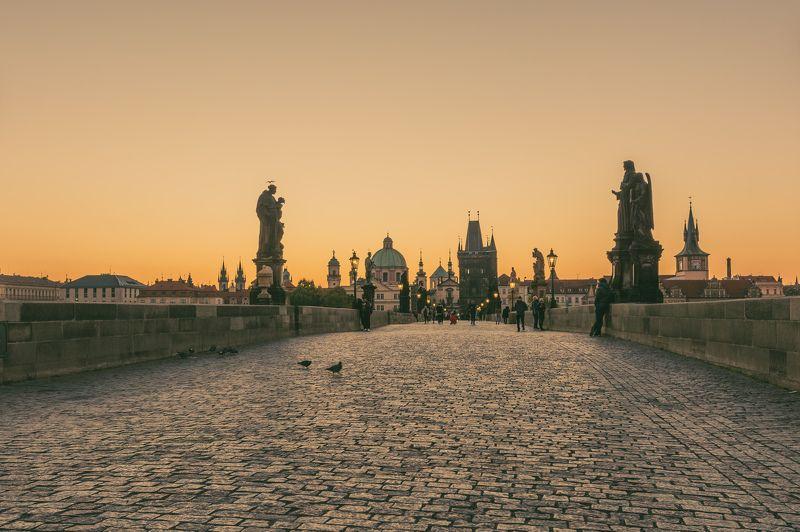 Чешская готикаphoto preview