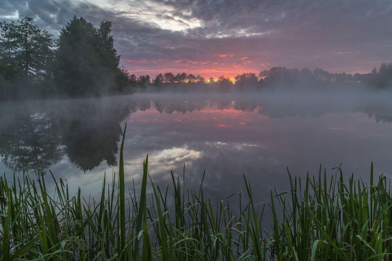 утро, рассвет, озеро, туман Перед восходомphoto preview