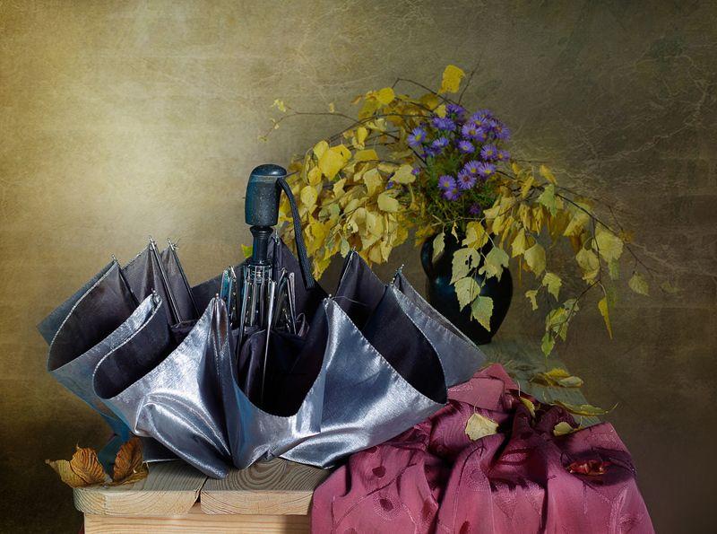 зонтик , серый , листья , осень , вера павлухина , С зонтомphoto preview
