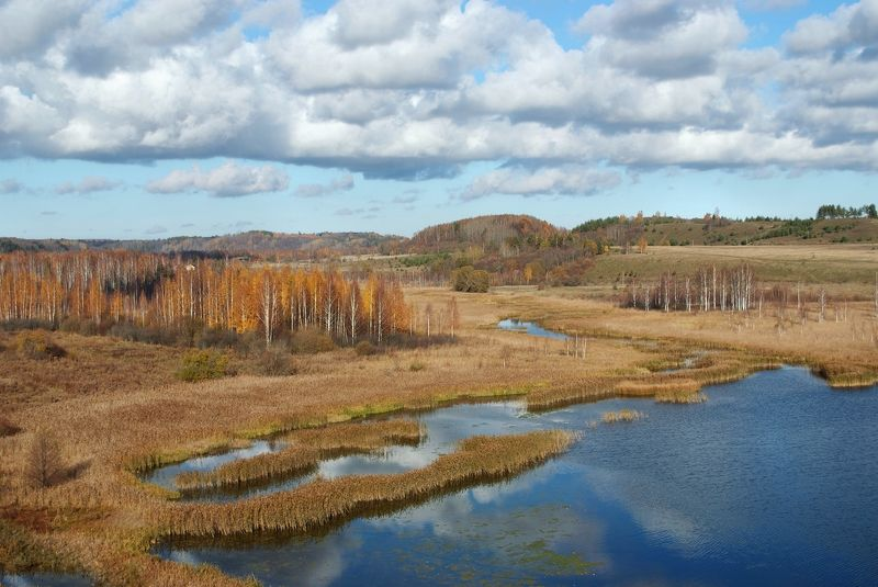 псков, изборск, осень, краски Изборский ландшафтphoto preview