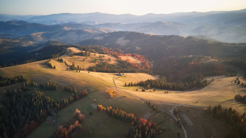 карпаты, осень, октябрь, вечер, закат, горы, Позолоченный сезонphoto preview