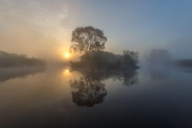 рассвет пейзаж утро туман река Ёжик в тумане.photo preview