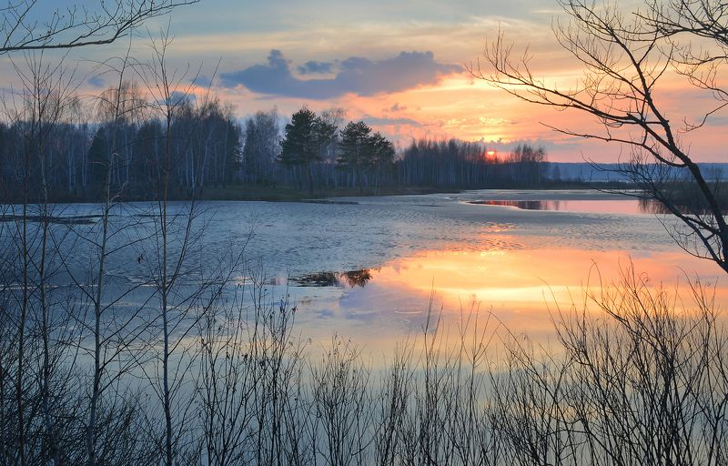 В тишине весеннего закатаphoto preview