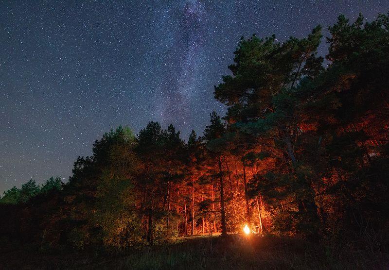 ночь, звезды, tamron Посиделки у костраphoto preview