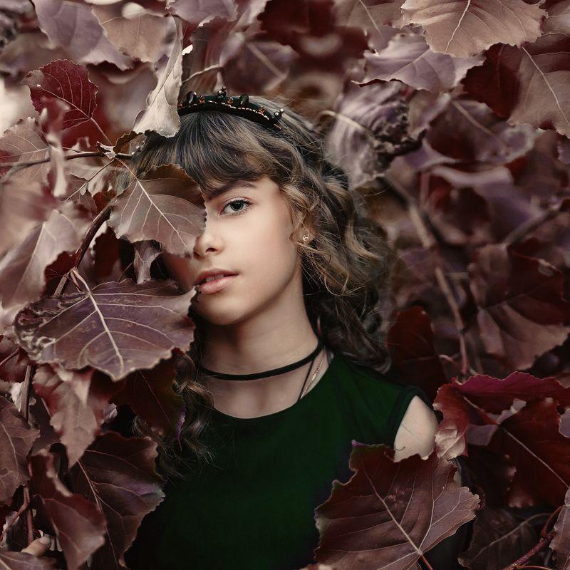 портрет, девочка, осень, красота, крупный план, арт Эмилияphoto preview