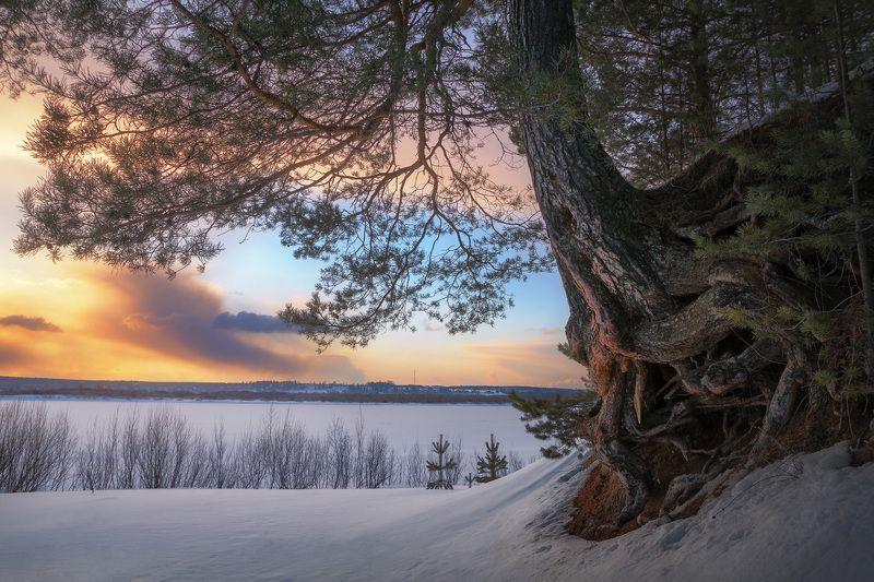 зима, снег, река, закат, вечер, мороз, дерево, сосна Кракен 2photo preview