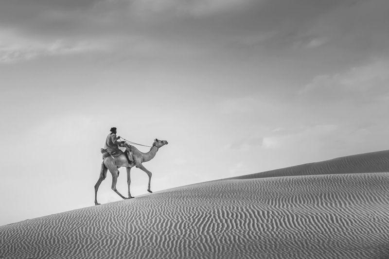 black&white Al-Rahulphoto preview