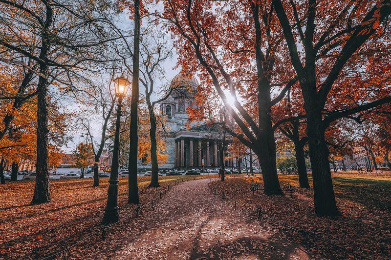 #осень #природа #город #листья #autumn #city Осеньphoto preview