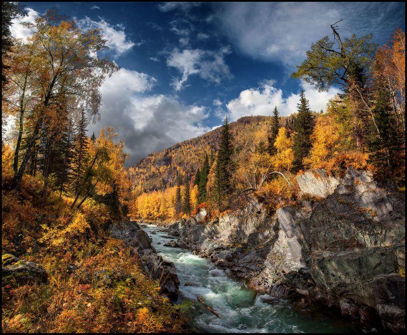 алтай, осень, кумир, река, вода, горы, каньон, золото Река в Золотых Берегахphoto preview
