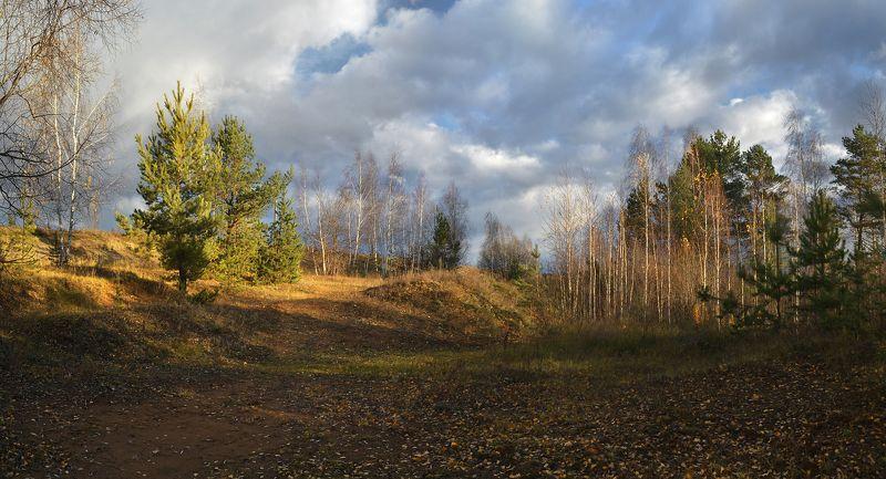 небо, облака, ветер, осень, октябрь,пасмурный день, солнечный свет, деревья Переменчивая погодаphoto preview