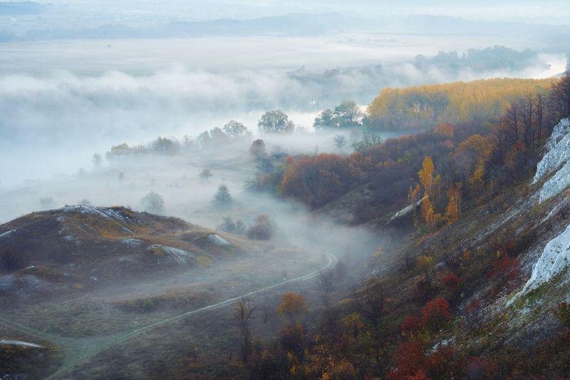 воронеж Дорога в туманphoto preview