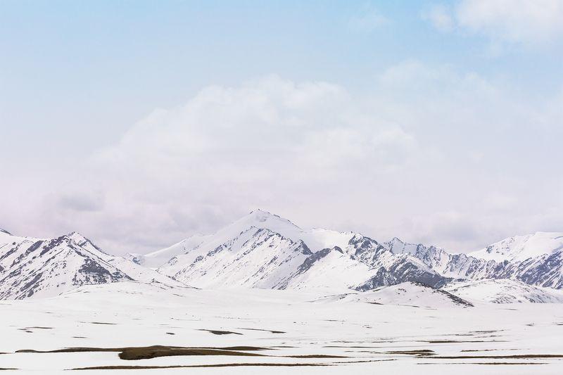 Киргизия  Ледник Барскаунphoto preview